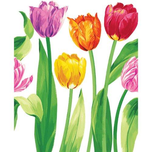 Amscam 1 Count Bright Tulips Plastic Table Cover, Multicolor