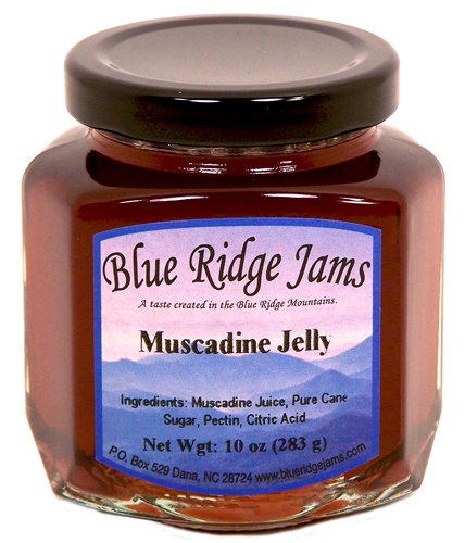 Blue Ridge Jams: Muscadine Jelly, Set of 3 (10