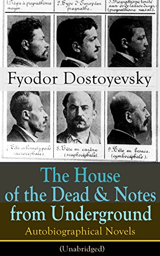 an introduction to the literary analysis of notes from the underground by dostoevsky Notes from underground analysis - enotescom  with an introduction and notes by richard peace  a biography of fyodor dostoevsky, literature notes from .