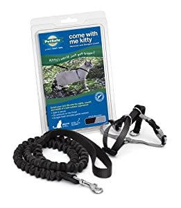 Petsafe Come With Me Kitty Harness and Bungee Leash, Large, Black