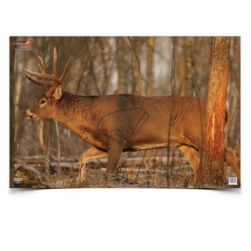 BWC 37481 EZE-Scorer Deer 23×25