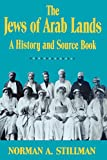 Jews of Arab Lands: A History and Source Book
