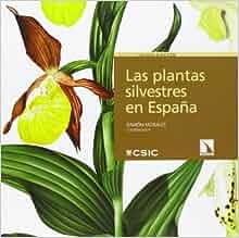 Las plantas silvestres en España: Ramón Morales Valverde
