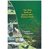 The Wild Birds of Queen's Park, Moonee Ponds
