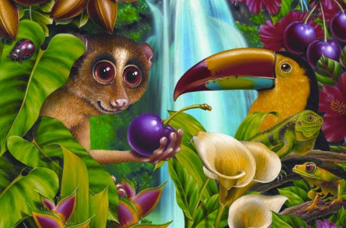 Cobble-Hill-Rainforest-Cherry