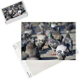 Photo Jigsaw Puzzle of SPH-1906 from Ardea Wildlife Pets