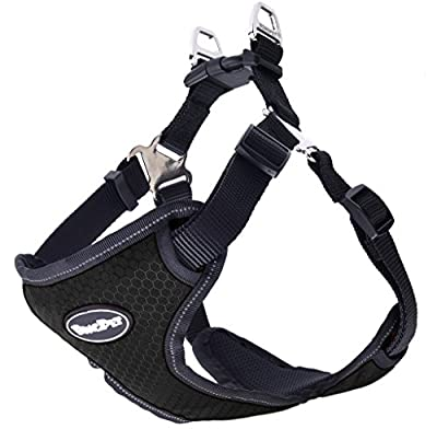 BINGPET No Pull Dog Harness Reflective for Pet Puppy Freedom Walking