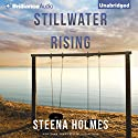 Stillwater Rising Audiobook by Steena Holmes Narrated by Amy McFadden