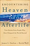 img - for Encountering Heaven and the Afterlife: True Stories From People Who Have Glimpsed the World Beyond book / textbook / text book