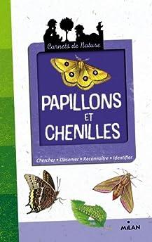 Brouettes a chenilles et papillons