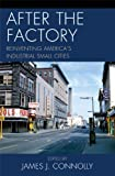 img - for After the Factory: Reinventing America's Industrial Small Cities (Comparative Urban Studies) book / textbook / text book