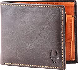 WildHorn Genuine Leather Wallet 23