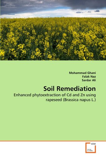 Soil Remediation: Enhanced phytoextraction of Cd and Zn using rapeseed (Brassica napus L.)