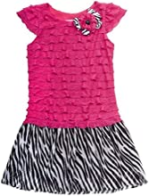 Rare Editions Little Girl Hot Pink Zebra Stripe Dress 4-6x