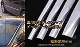 Origin 車用 メッキ プロテクター モール メッキモール シルバー 幅20mm 長さ15m CIT15M