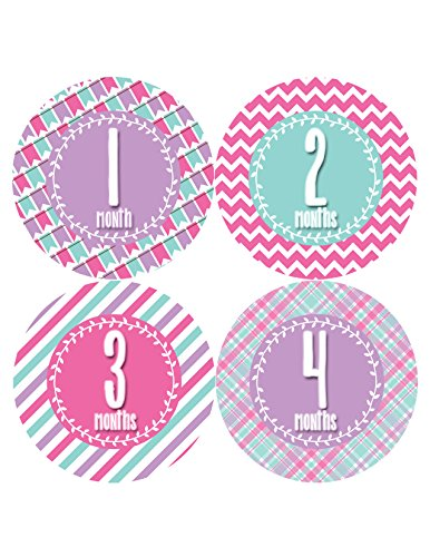Months in Motion 395 Monthly Baby Stickers Baby Girl Months 1-12 Milestone