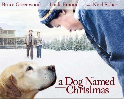A Dog Named Christmas Dvd (Hallmark Hall Of Fame) front-1018766
