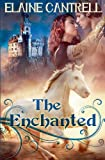 img - for The Enchanted book / textbook / text book