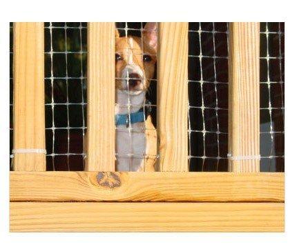 Deck Guard image