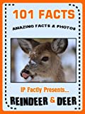 101 Facts... Reindeer & Deer! Reindeer Books for Kids. (101 Animal Facts Book 16)