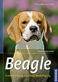 Beagle: Auswahl, Haltung, Erziehung, Beschäftigung (Praxiswissen Hund) title=