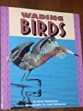 Wading Birds (Pull Ahead Books) (082253620X) by Anne Welsbacher