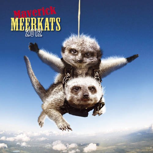 Maverick Meerkats 2012 Calendar