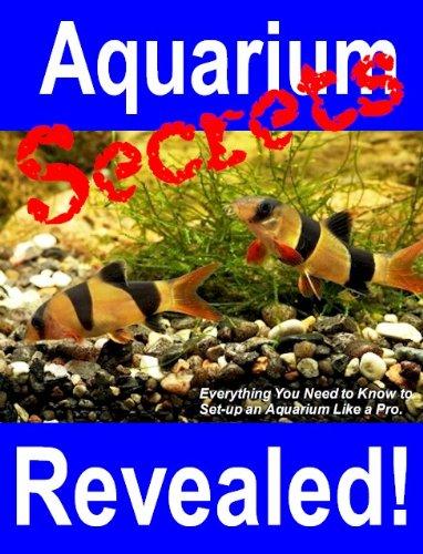 Aquarium Secrets Revealed!