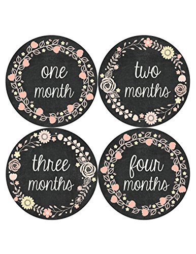 Months in Motion 356 Monthly Baby Stickers Baby Girl - Months 1-12 - Chalkboard