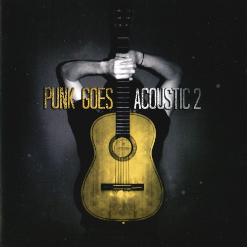 punk-goes-acoustic-2