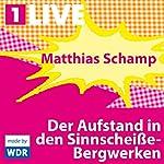 Der Aufstand in den Sinnscheiße-Bergwerken | Matthias Schamp