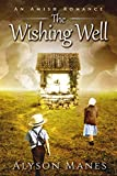 The Wishing Well: An Amish Romance