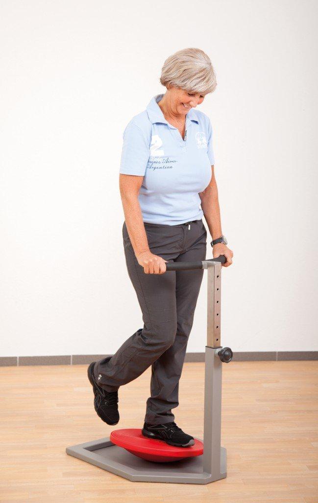 Flexo Step System inkl. Aufstiegshilfe Easy Step / Gewicht: 65 kg / Farbe: grau / für Kinder ab 6 Jahren, Jugendliche, Erwachsene, Senioren jetzt bestellen