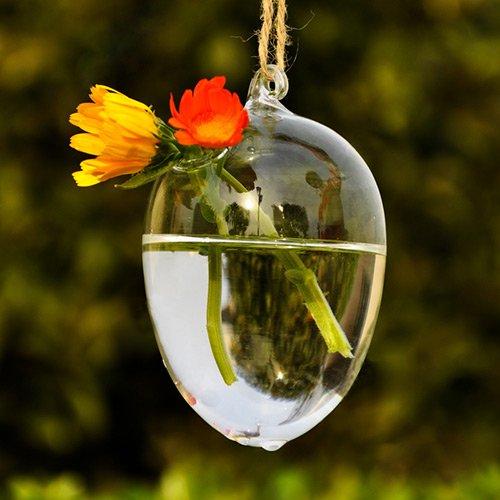 Forme d uf vase suspendu bouteille container conteneur - Oeuf suspendu jardin ...