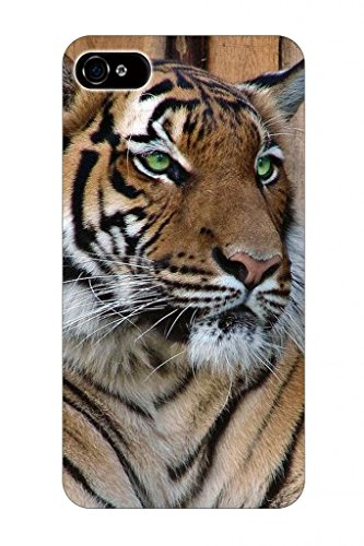 Hungo Powerful Tiger With Green Eyes Animal Print Pattern Theme Protective Cover Sleeve Case For Apple Iphone 5 5S 5G front-753793