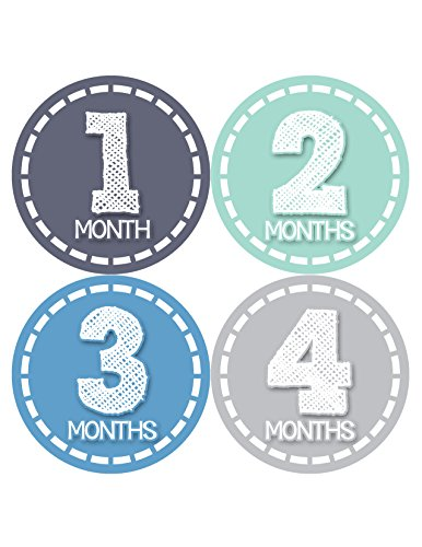 Months in Motion 370 Monthly Baby Stickers Baby Boy Months 1-12 Milestone Photo - 1