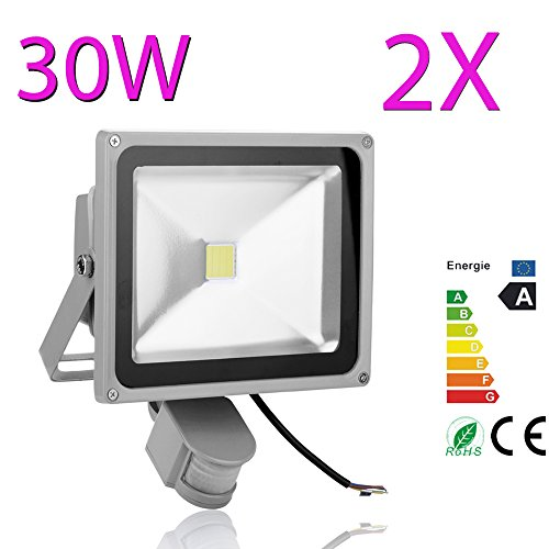 Pack Of 2 30W Cool White Pir Floodlight Outdoor Waterproof Ip65 Wall Washers Led Floodlight Ac220-240V