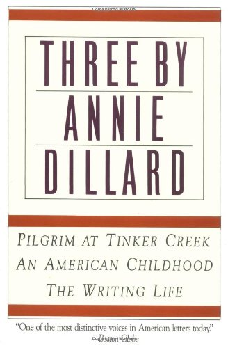 annie dillard the writing life essay On friday, i read the essay annie dillard and the writing life, by novelist alexander chee who took a class from annie dillard in 1989 he writes, by the time i.