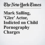 Mark Salling, 'Glee' Actor, Indicted on Child Pornography Charges | Liam Stack