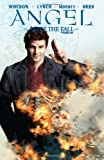 Angel: After the Fall Volume 4 (Angel (IDW Paperback))