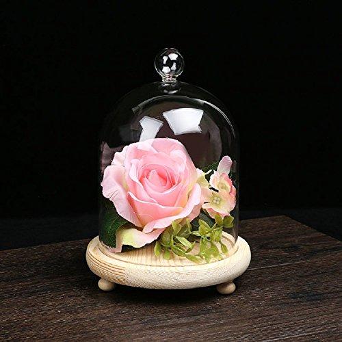 xjoel-decorativa-boticario-de-vidrio-transparente-de-bell-de-bell-gafas-planta-terrario-de-visualiza