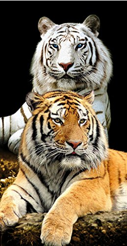 White & Bengal Tiger Cats Terry Velour Beach/Bath Towel