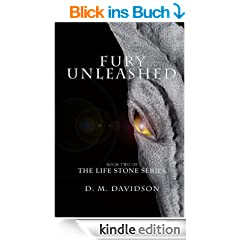 Fury Unleashed (The Life Stone Series Book 2) (English Edition)