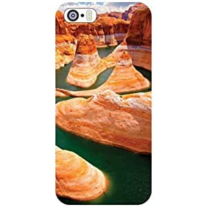 Apple iPhone 5S Back Cover - Beauty Designer Cases