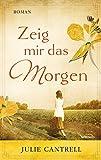 img - for Zeig mir das Morgen: Roman (German Edition) book / textbook / text book