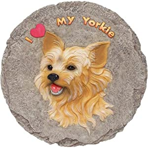 yorkshire terrier stepping stone