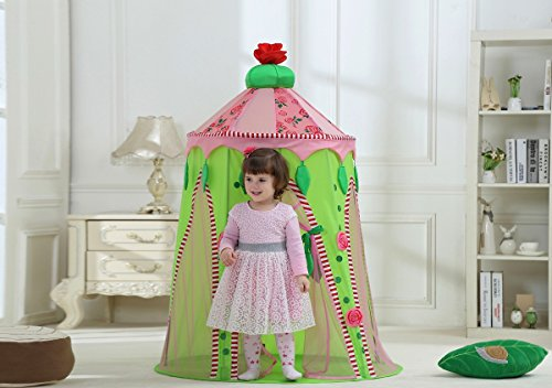 Dream House Girls Dome Inside Castle Play Pop up Canopy Tents for Babies