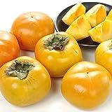 国華園 和歌山産 ご家庭用 もみじ柿 4kg ひらたね柿 平核無柿 種なし柿