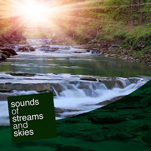 a-stream-field