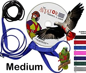 The AVIATOR Bird Harness & Leash - the only truly safe bird restraint system and the only ESCAPE PROOF pet bird harness - Medium - Blue